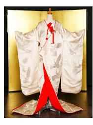 プラン:月姫の衣装例